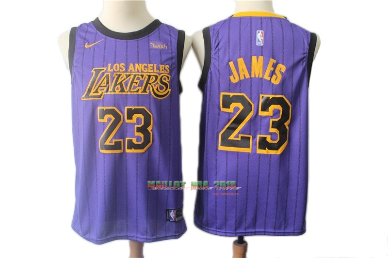 Maillot NBA Nike Los Angeles Lakers NO.23 Lebron James Pourpre Ville 2018-19