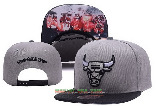 Bonnet 2017 Chicago Bulls Gris NO.05